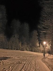 pocela ski sezona (3)