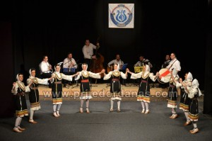 skud dr mladen stojanovic-godisnji koncert (1)