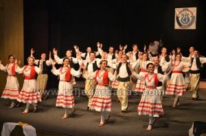 skud dr mladen stojanovic-godisnji koncert (3)