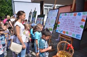 kulturno ljeto 2015-biblioteci s ljubavlju (4)