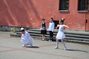 kulturno ljeto 2015-biblioteci s ljubavlju (6)
