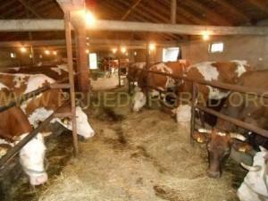 oprema za poljoprivrednike (4)