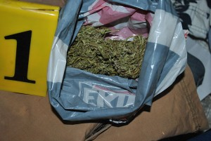 cjbpd-pistolj-marihuana (4)