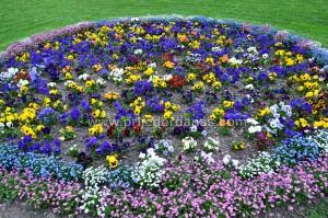 proljetno uredjenje grada-april 2016 (1)