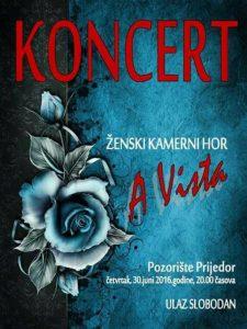 a vista-koncert-plakat