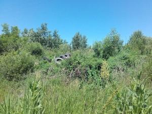 vatrogasci prijedor-pozar-deponija guma (8)